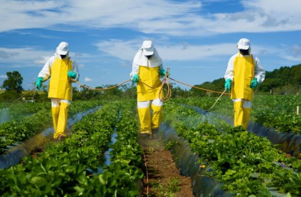 Выпуск пестицидов в России не слабеет
