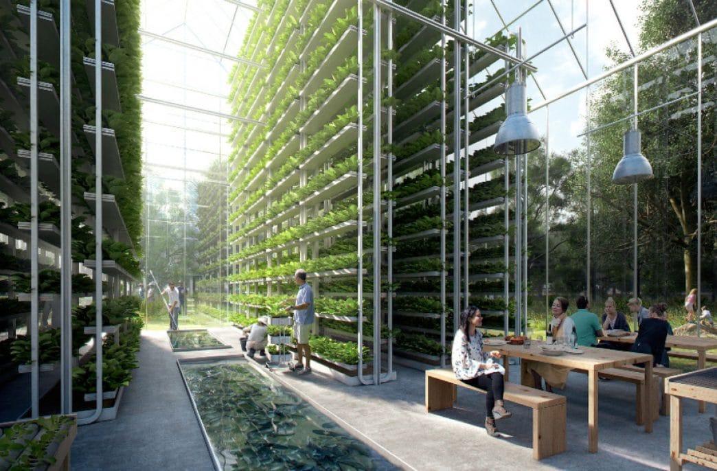 В ОАЭ построят крупнейшую вертикальную ферму