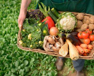 Развитие органического земледелия сдерживают трудности