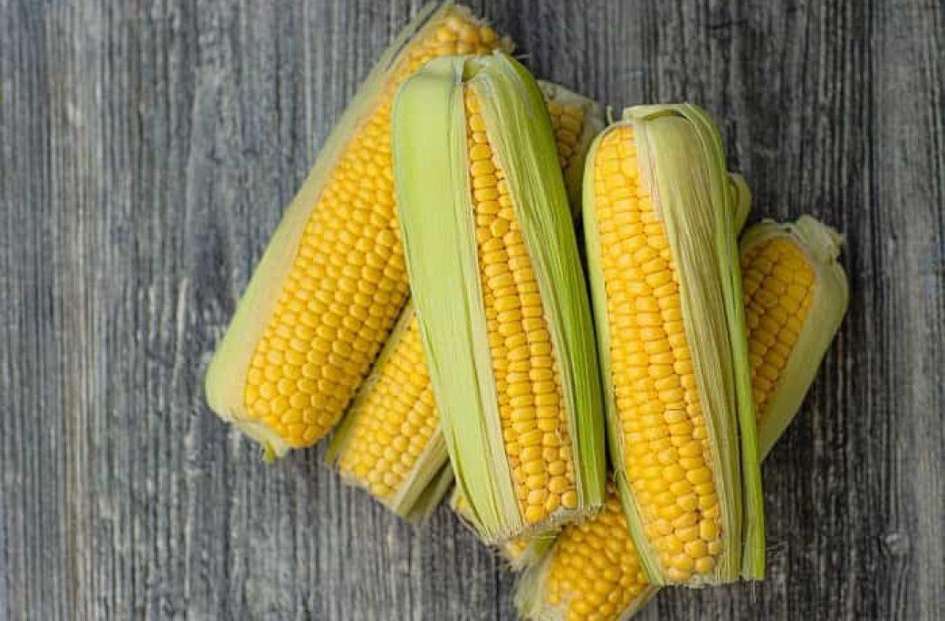 Как и чем подкормить кукурузу