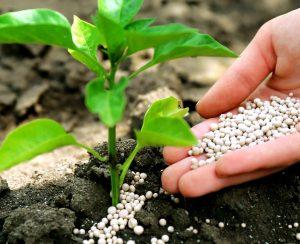 Выпуск фосфорных удобрений в России пытается восстановиться