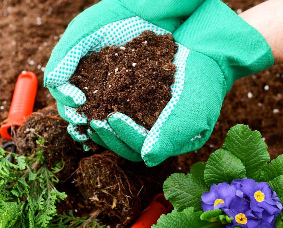 «ФосАгро» разрабатывает биологические удобрения
