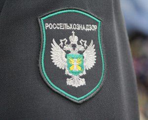 «Русь» оштрафовали за старание