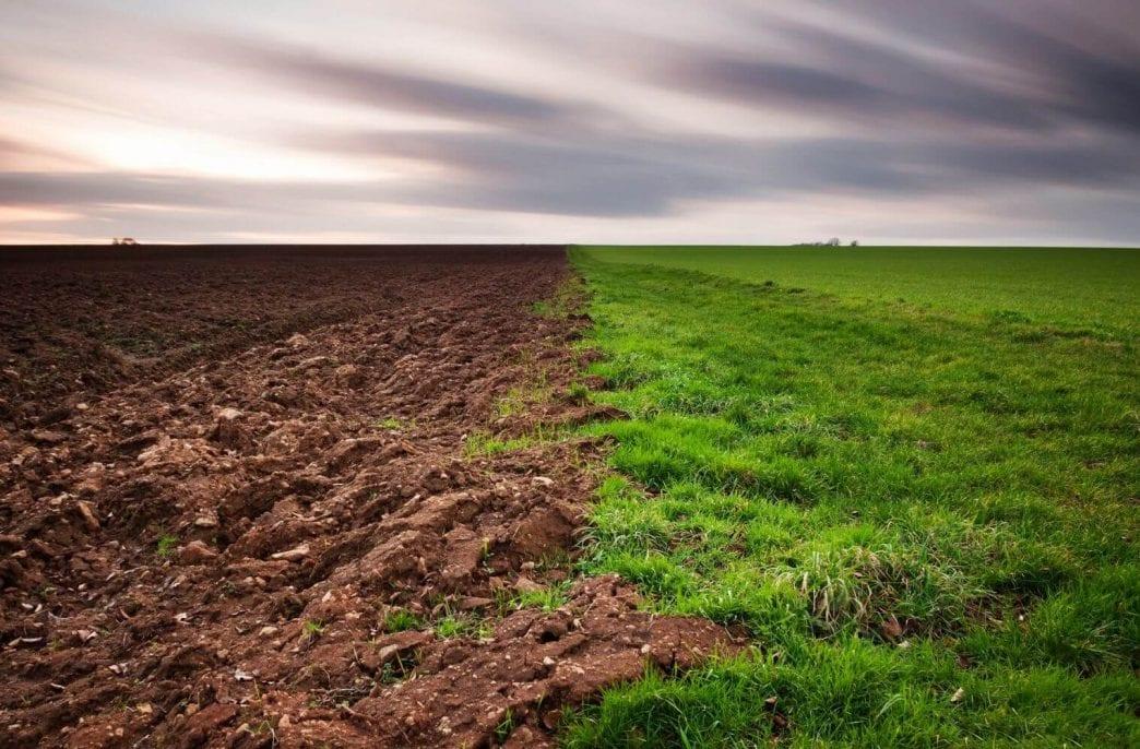 В Удмуртии сократились площади неиспользуемых земель