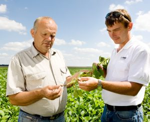 BASF и Tecnalia разработали инновационную технологию