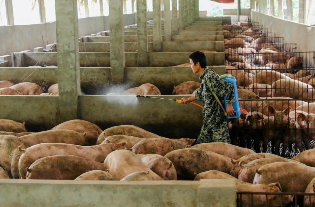 В Nutrien прогнозируют рост спроса в Китае