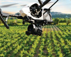 Шри-Ланка тестирует дроны