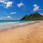 Французские Карибы оказались отравлены пестицидом