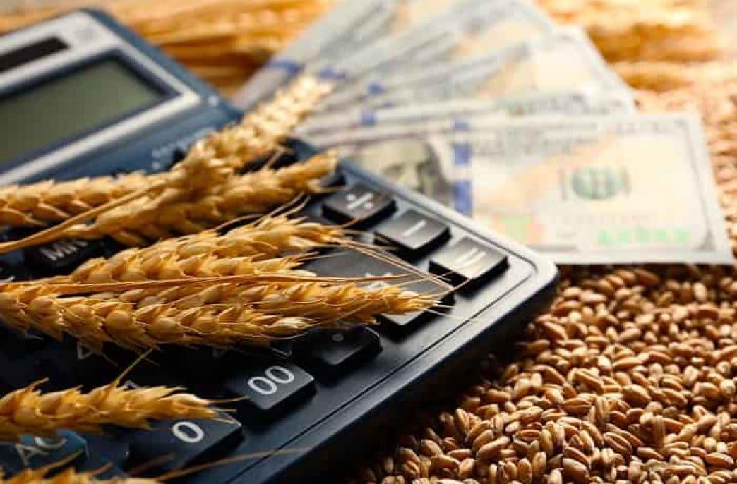 Кредит на развитие местного сельского хозяйства: как и где получить