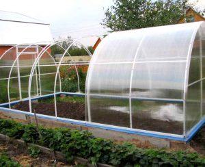 Рейтинг теплиц для садовых хозяйств