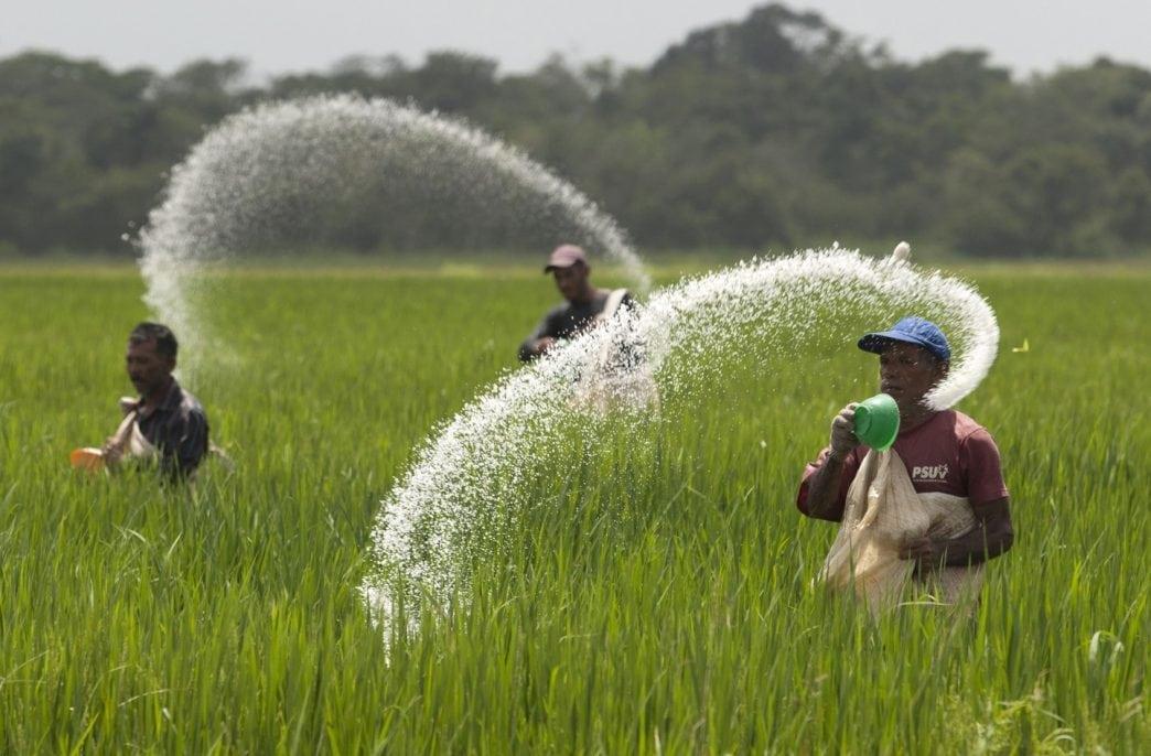 В Индии предлагают снизить пошлины на агрохимическое сырье