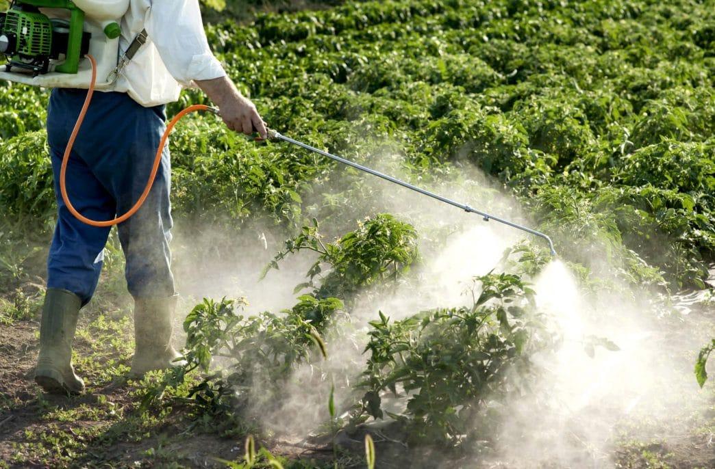 Выпуск пестицидов в России активно растет