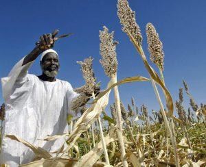 «Уралхим» в 2021 году начнет поставки в Судан