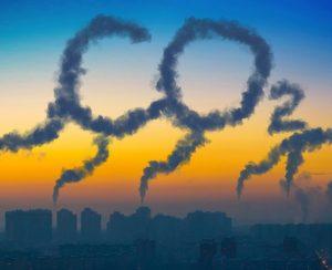 Ученые предупредили об изменениях в цикле углерода