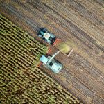 Сергей Макаров: «Наш радар направлен на новые и быстрорастущие сегменты»
