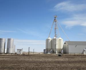 Cronus Chemicals не отказывается от трудного проекта