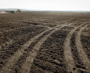 В Ставропольском крае подкормили озимые
