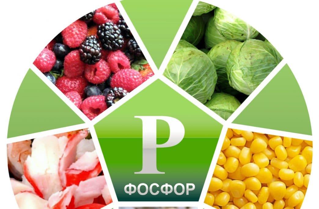 В Ростовской области потратят 1 млрд. руб. на фосфорные удобрения