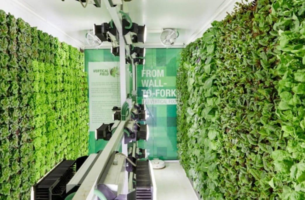 Vertical Field выходит на рынок ОАЭ