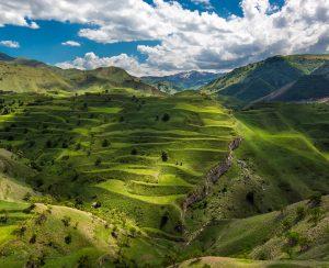 В Дагестане хотят расширить внесение органических удобрений