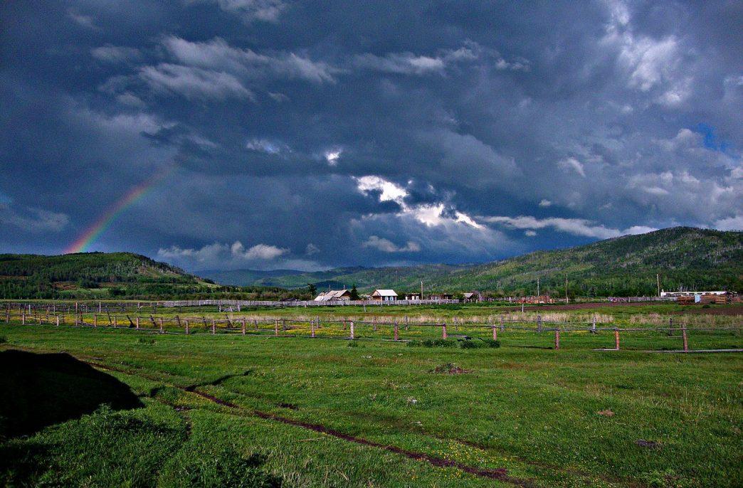 В Забайкальском крае удвоят внесение агрохимикатов