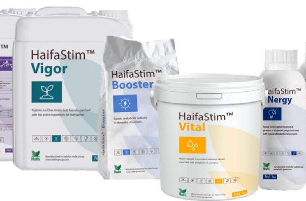 Haifa Group вывела на рынок новую линейку препаратов