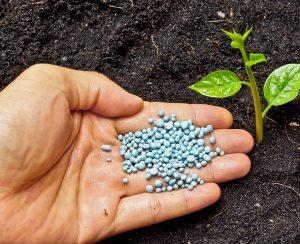 Производство фосфорных удобрений в России заметно приподнялось