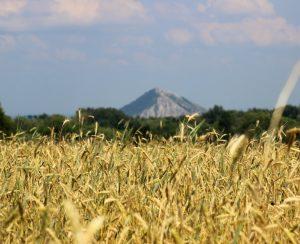 В Башкортостане приступили к закупкам агрохимикатов