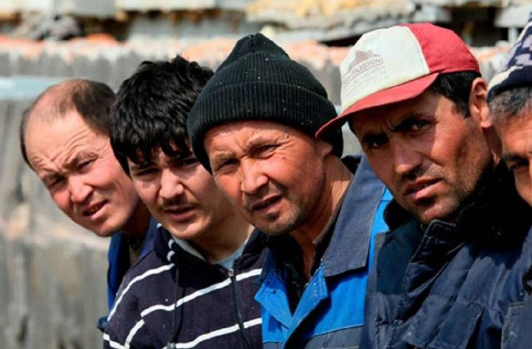 В «Эко-Культуре» обнаружили нелегальных мигрантов