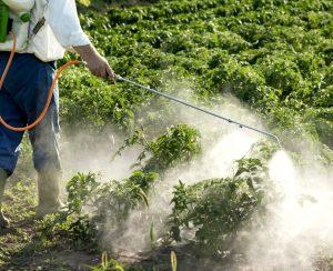 В России ожидается рост использования пестицидов