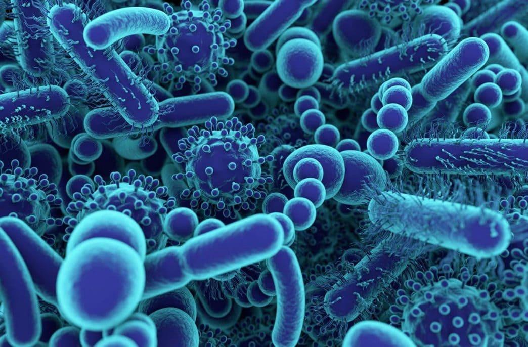 Ученые хотят оптимизировать число бактерий в почве