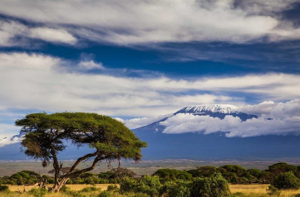Fertiplant East Africa запустит завод в Кении