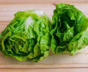 Выращиваем салат Айсберг из семян