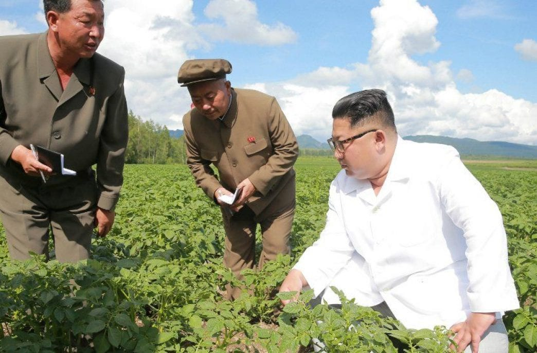 КНДР возобновила торговлю с Китаем