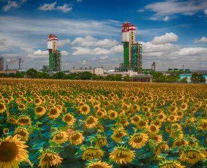 Одесский припортовый завод поставил рекорд по отгрузке карбамида