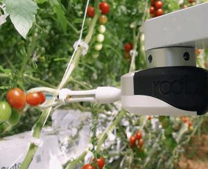AppHarvest приобретает Root AI