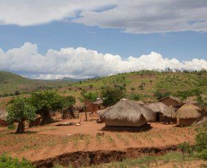 Малави хочет сама производить удобрения