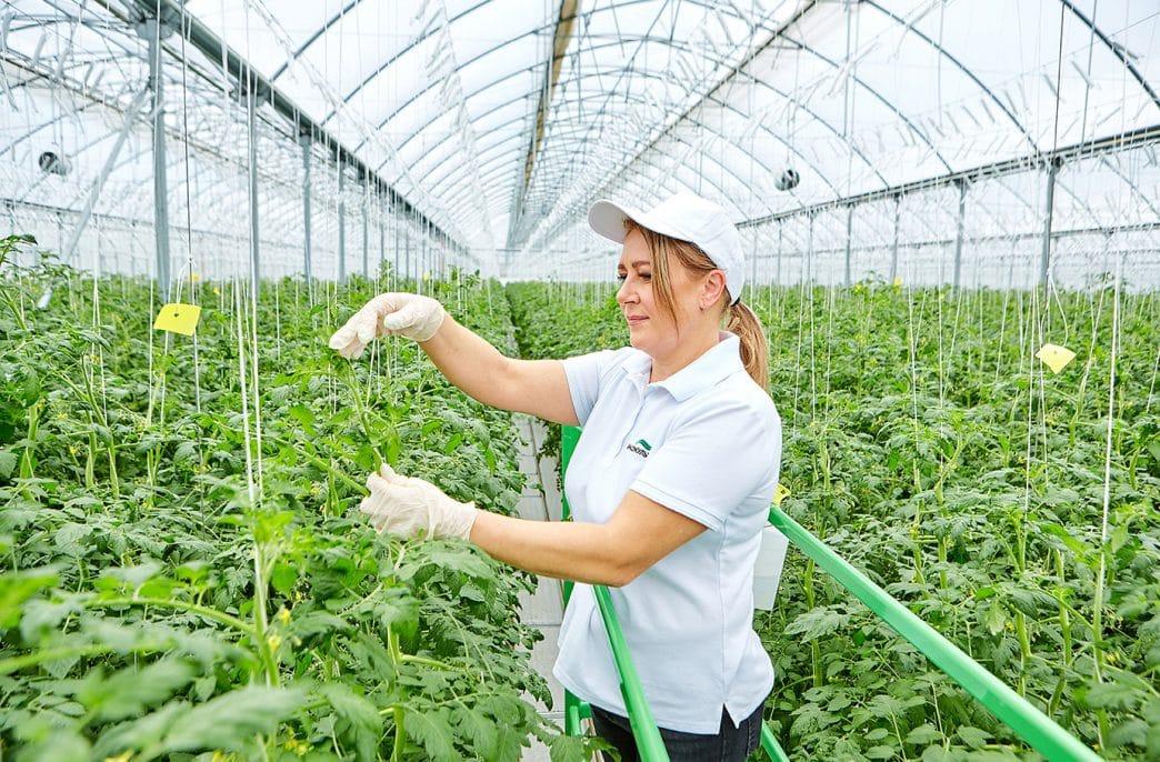 «ЭКО-культуре» нужны работники без специальности