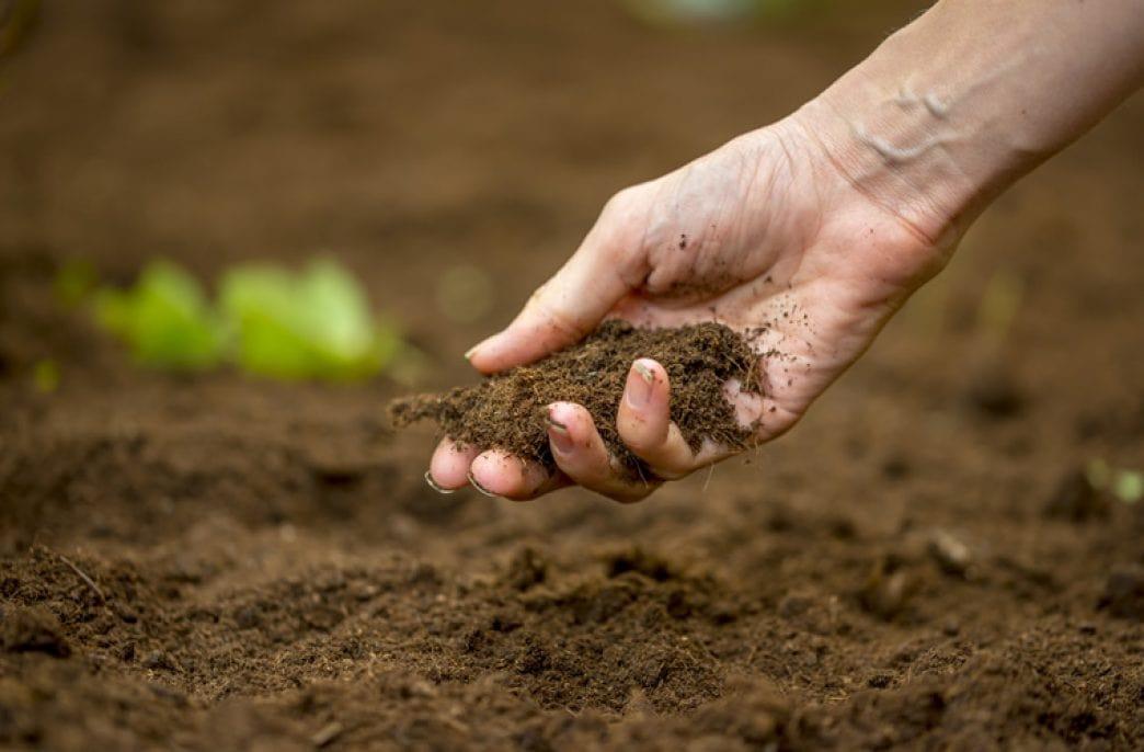 Mosaic озаботилась фертильностью почв