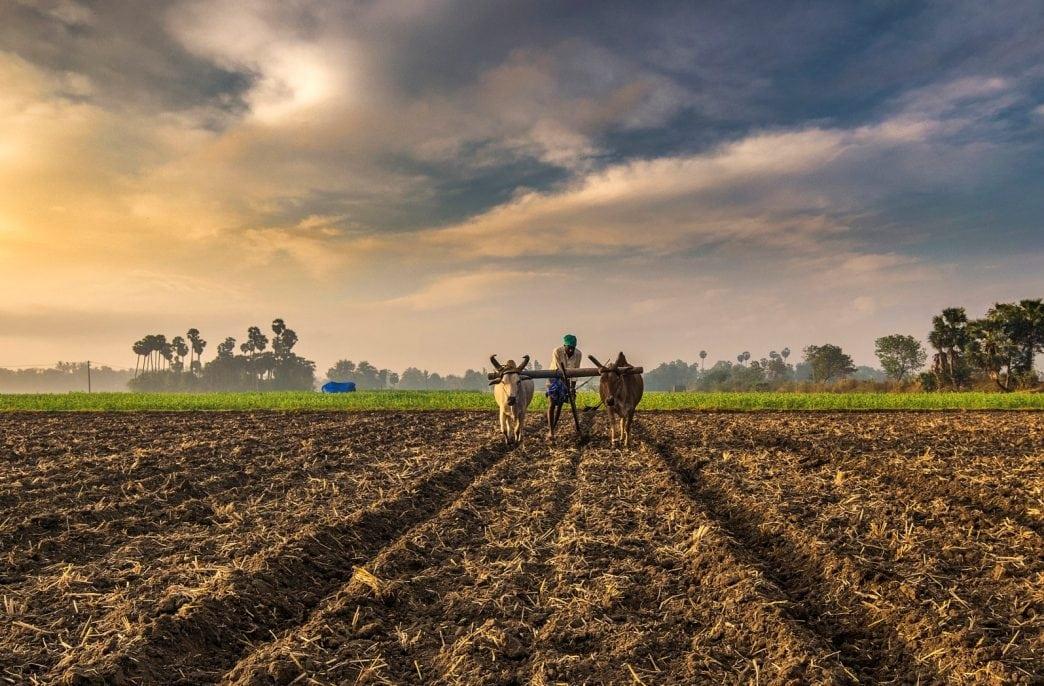 Индия получит 600 тыс. тонн хлористого калия из Израиля