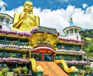 Шри-Ланка откажется от минеральных удобрений