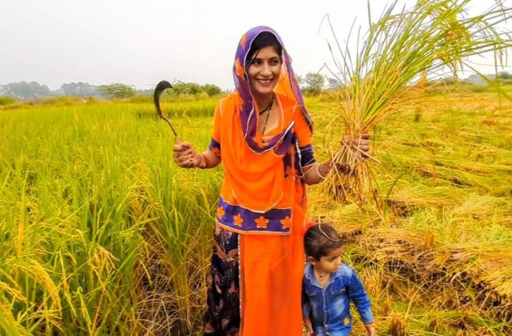 В Индии наведут порядок на рынке биостимуляторов