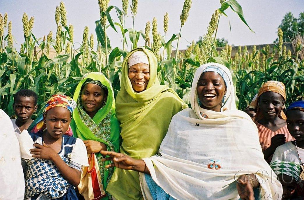 В Нигерии усиливают борьбу с махинациями на рынке удобрений