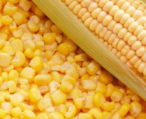 Koch Fertilizer расширит поставки в Кукурузный пояс США