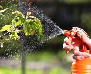 Vive Crop Protection выводит на рынок новый фунгицид