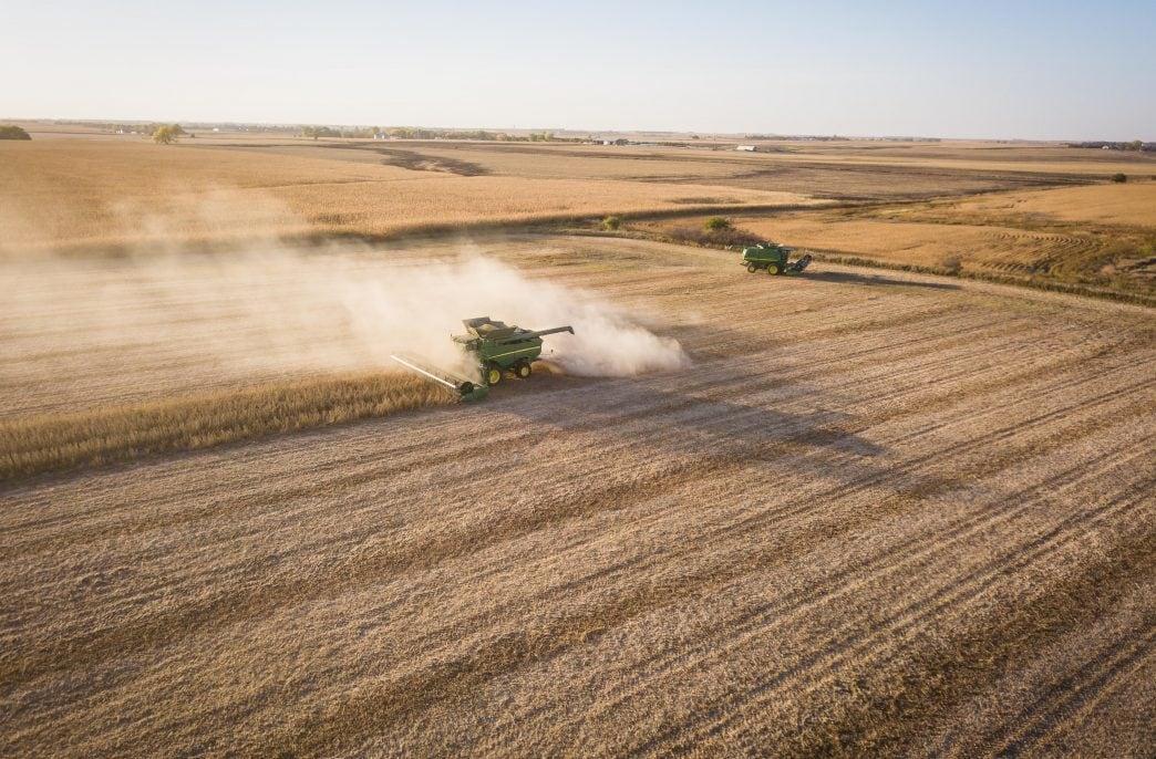 Роман Мартынов: «У нас обширные возможности по разработке агрономических моделей»