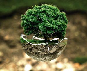 Остаточным плодородием почв хотят управлять