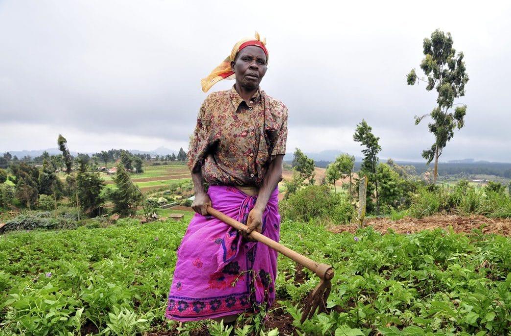 В Кении фермерам выдали смартфоны