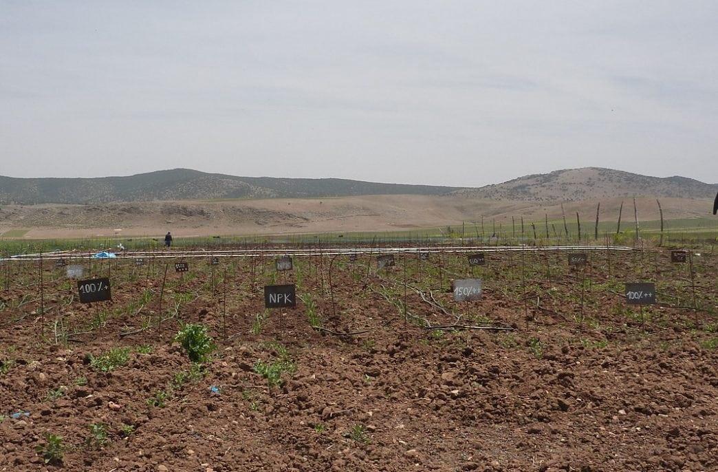Фермеры США получили калькулятор жидких удобрений