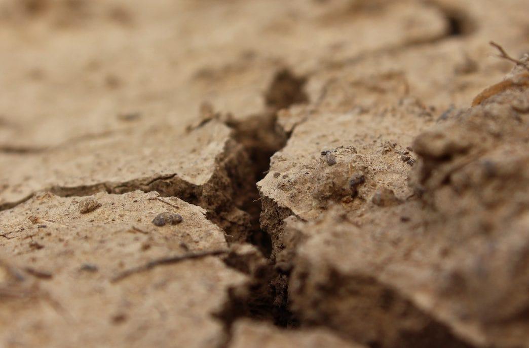 В Курской области возникла проблема с почвами